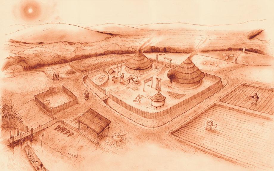 Illustration for Gwent garden designs ltd